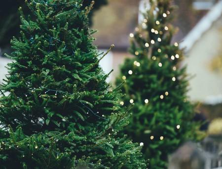 Christmas Markets   © Annie Spratt / Unsplash