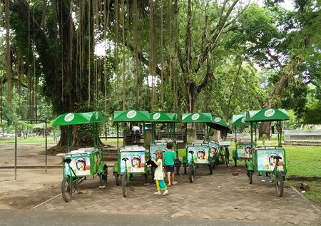 Viharamahadevi Park in Cinnamon Gardens / Courtesy of the author