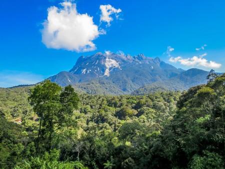 Kinabalu Park © Christopher Mazmanian/Shutterstock