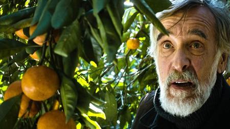 Tangerines | Courtesy of Allfilm / Georgian Film