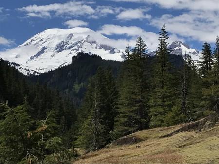Mt. Rainier National Park   © chelsealwood / Flickr