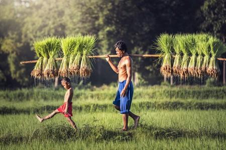 Live like the locals | © SantiPhotoSS/ Shutterstock