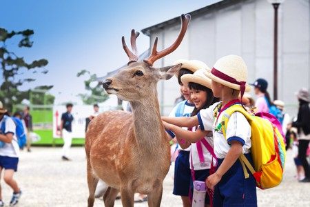 Japan was made for kids   © oleandra / Shutterstock