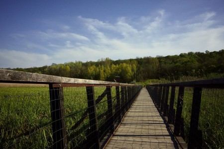 Comana Natural Park | © J Stimp / Flickr