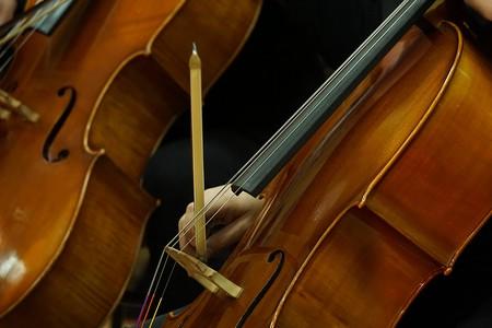 Orchestra   © Enitsa Koeva/Flickr