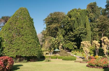 The Royal Botanic Gardens in Kandy | © travelmag.com / Flickr