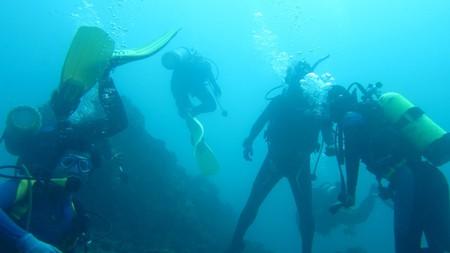 Diving | © jeff~ / Flickr