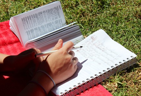 Studying Spanish in the sun   © Leaflanguages/Flickr