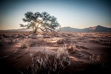 Namibia | © wiggijo / Pixabay