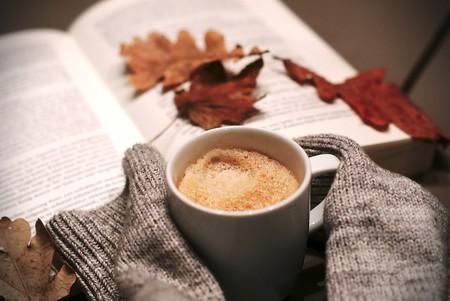 Getting cosy | © melkhagelslag/Pixabay
