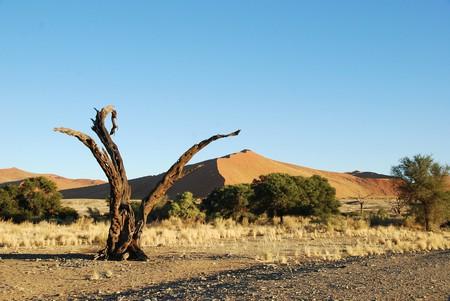 Majestic Namibia | © katja/Pixabay