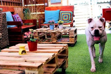 Beautiful Front Patio & Company |Courtesy of Amanda Hostel & Restaurant