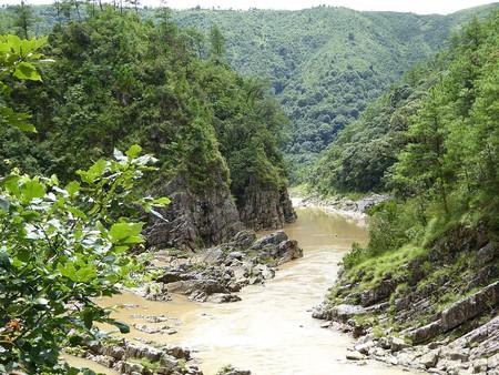 Mawphlang Sacred Forest | © Prida Ariani / Wikimedia Commons