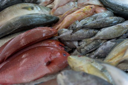 The ever-popular fish market in central Abu Dhabi | © Bob Klannukarn/Flickr