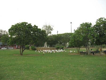 hill park