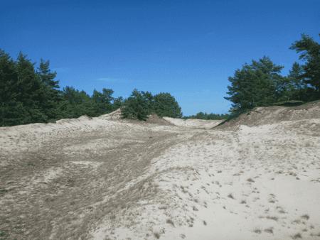 Łeba beach