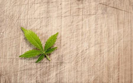 Switzerland's legal cannabis is a new craze that won't get you high | © Wild0ne / Pixabay