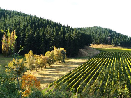 Mission Winery | © Sandra Cohen-Rose and Colin Rose/Flickr