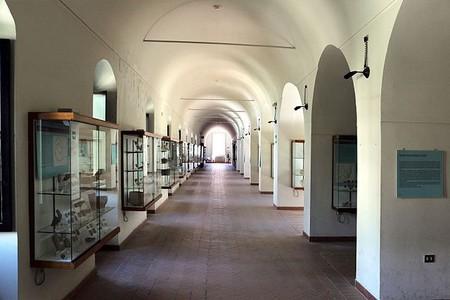 "National Archaeological Museum of Matera ""Domenico Ridola""|©Sailko/WikiCommons"