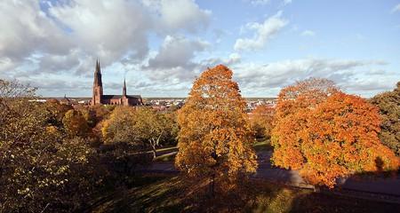 Uppsala   © Wikimedia