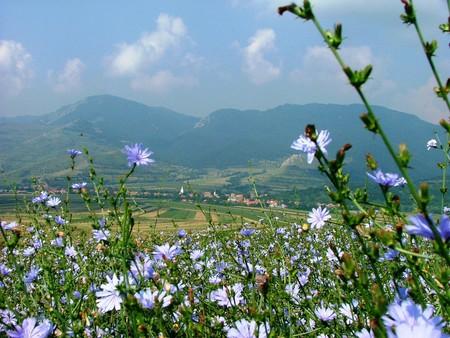 Camping in Rimetea, Transylvania | © Zajcsik / Pixabay