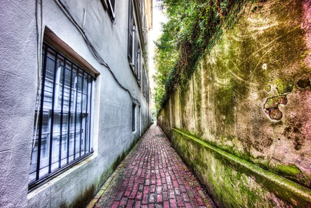 Downtown Charleston | Courtesy of Samantha Connors