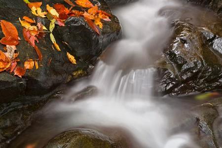 The Glen Artney area of Patapsco Valley State Park near Baltimore, Maryland  © Nicolas Raymond/Flickr