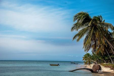 Madagascar I © Sandy Marie / Flickr