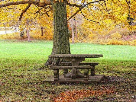 A picnic in the park? | © Chris Sorge/Flickr