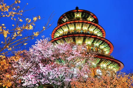 The cherry blossoms at Wuji Tianyuan Temple | © 攝影家9號 / Flickr