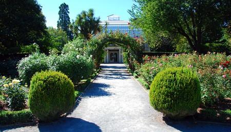 Christchurch Botanic Gardens   © Robert Young/Flickr