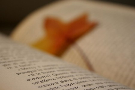 Pablo's Pages | © * Polly * | Flickr