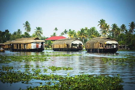 Houseboat in Alappuzha (Allepey), Kerala