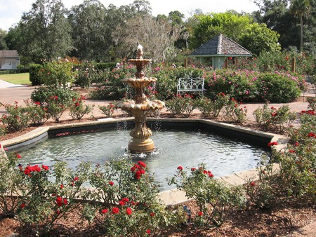 The Harry P. Leu Botanical Gardens are among the finest in Orlando