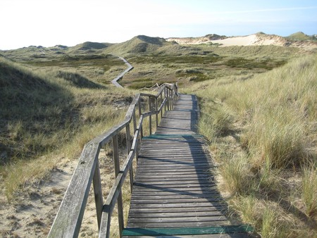 Amrum | © Kuhnobert / Pixabay