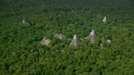 The Maya city of Tikal (Wild Blue Media) | As featured in National Geographic's 'Lost Treasures of the Maya Snake Kings,' more information about which can be found at www.natgeotv.com