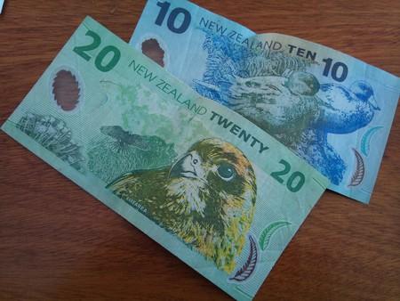 New Zealand dollars Kari Baron / Flickr