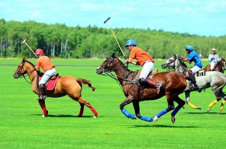 A polo match | © Vince pakhala/Wiki Commons