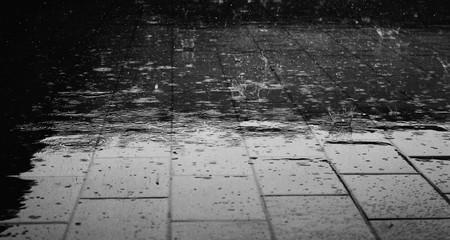 rain on the pavement | ©Giuliamar / Pixabay