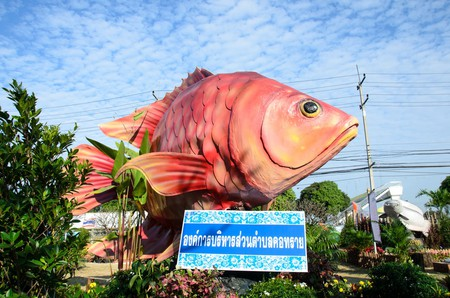 Singburi is famous for its fish