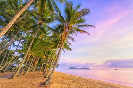 Palm Cove at sunrise |© Darren Tierney / Shutterstock