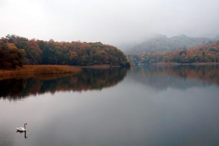 Foggy view of Lake Goygol | © Polad Gasimov/Shutterstock