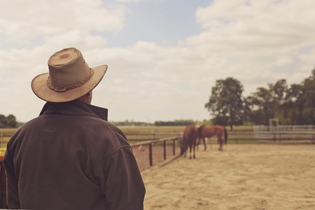 Farmer watching his horses | © FeeLoona/Pixabay