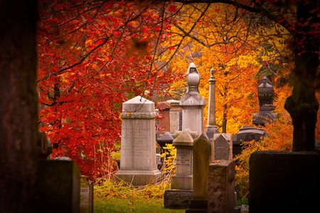 Fall in Mount Pleasant Cemetery
