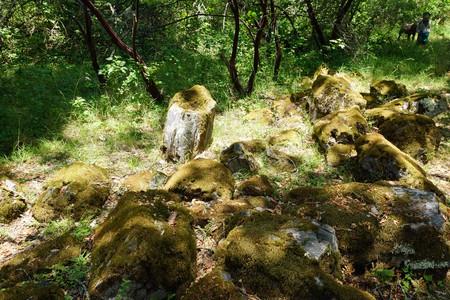 2012-05-26 05-28 Mendocino County 226 Calistoga, Petrified Forest