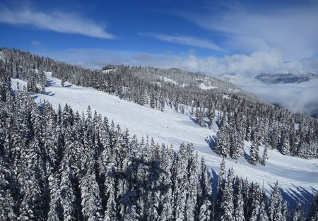 View of the ski slopes