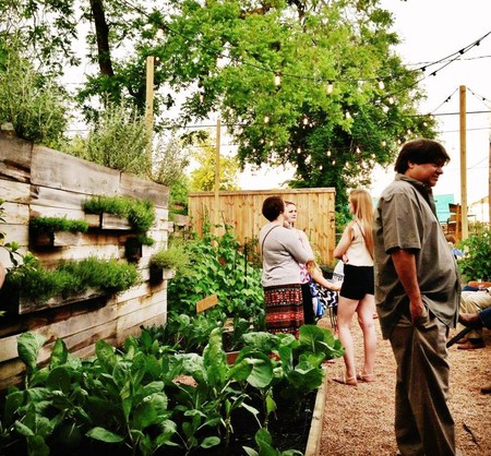 Garden at Coltivare