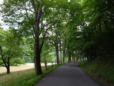 A country road in West Virginia