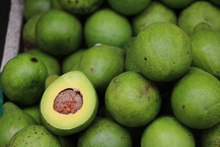 Avocados are a stick with which to beat millenials
