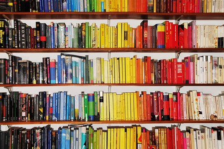 Bookshelf full of colourful books © Pietro Bellini / Flickr